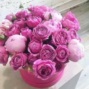 Коробка пионы и пионовидная роза R758
