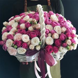 Корзина 51 пионовидная роза микс R959