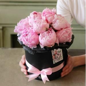 15 розовых пионов в черной коробке R768